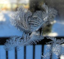 Ice On Glass by Steve Stones