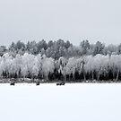 Ice Fishing by Aaron Bottjen