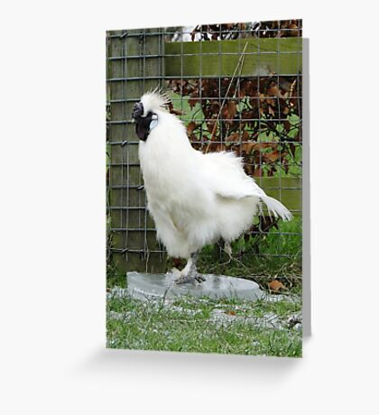 6.0 - The Ice Dancer Greeting Card