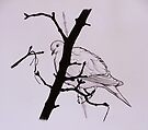 'Lift me like an olive branch and be my homeward dove' by Sukhwinder Flora