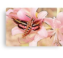 Flower Angels Canvas Print