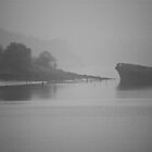 Foggy boat on the River Wear by bearmagrills