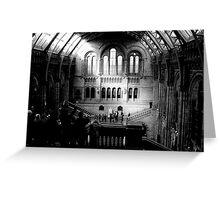 London - Natural History Museum - Main Hall Greeting Card