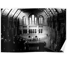 London - Natural History Museum - Main Hall Poster