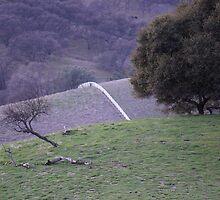 Solano Hills by ZenCowboy