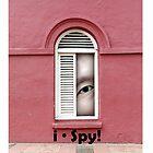 i Spy! by Gwoeii