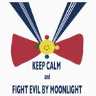 FIGHTING EVIL BY MOONLIGHT by singingBathtubs