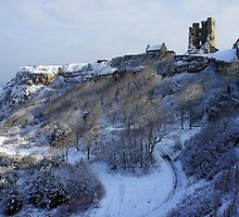 Scarborough Castle by John (Mike)  Dobson