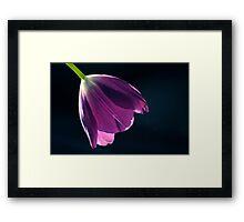 Aria En Violet Framed Print