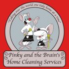Pinky and the Brain Home Cleaning by WUVWA