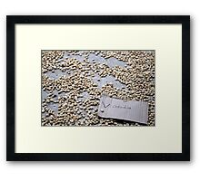 Coffee beans, Colombia Framed Print
