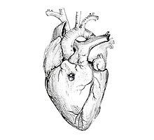 Distrusting heart Photographic Print