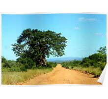 Take the gravel road past the old Baobab..... Poster