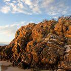 Tarkine coastal outcrop - Arthur River, Tasmania by clickedbynic