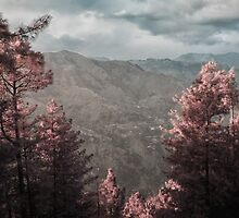 Infrared Valley by Hasan Ibrahim