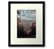 Infrared Valley Framed Print