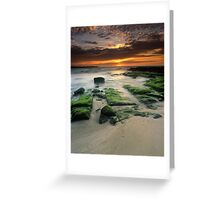 """""""Alone"""" ∞ Shellharbour, NSW - Australia Greeting Card"""
