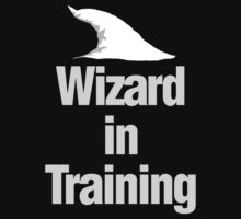 Wizard in Training by MarkSeb