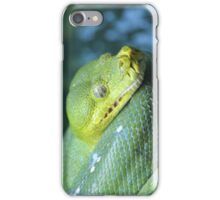 Green Tree Python (iPhone/iPod Case) iPhone Case/Skin