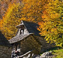 Golden autumn trees and stone cottage at the end of Valle Verzasca in Ticino, Switzerland by Michael Brewer