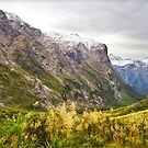 N.Z. Rugged Mountains 04 by Chris Cohen