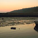 Lyme Regis Harbour , Low tide . by SWEEPER