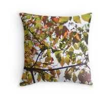 Autumnal Day Throw Pillow