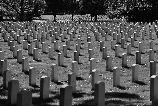 Black and White Arlington National Cemetery  by Motyka03