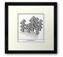 Shubie Shadow Forest Framed Print