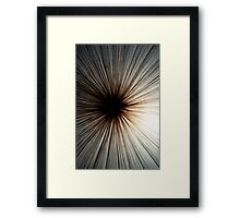 Light Shroom Framed Print