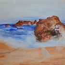Goat Rock Beach by budrfli