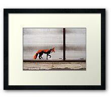 Urban Fox, by Stewy Framed Print