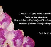 Psalms 34:4,5 by Deborah McLain