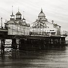 Textured Wall Art Eastbourne Pier by Natalie Kinnear