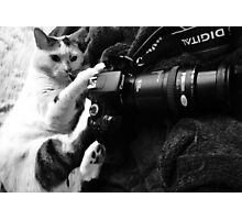 My Canon Cat Photographic Print