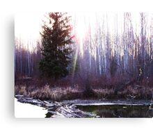 The Sun Shines over the Beaver Dam Canvas Print