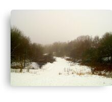 A Winter Scene Canvas Print