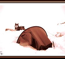 Snowcamp  2. (Enhanced) by Graham Povey