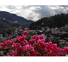 Sierra Madre With Bougainvillea - Sierra Madre Con Buganvilla Photographic Print