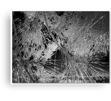 Abstract Vector Foliage  Canvas Print