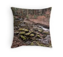 A Slow Rush Throw Pillow