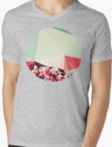 Poppy Field Tris Mens V-Neck T-Shirt
