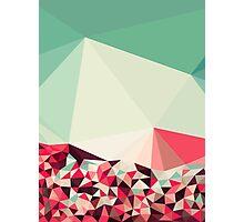 Poppy Field Tris Photographic Print