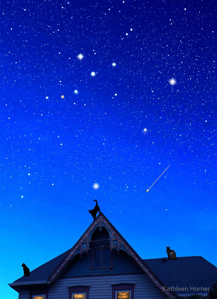 Cygnus the Swan and the Summer Triangle by Kathleen Horner