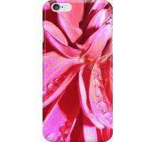 Colour Explosion iPhone Case/Skin