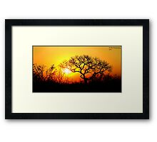 Kruger Park Sunset Framed Print