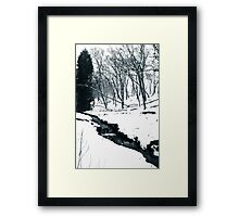 Purity of nature Framed Print