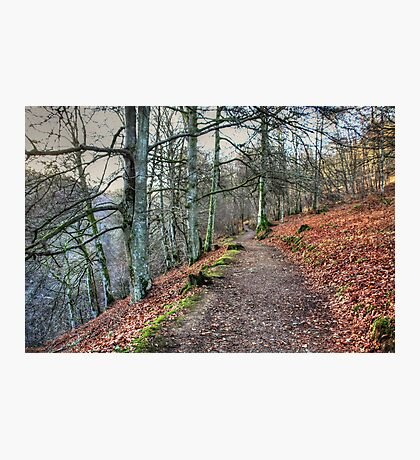 The Birks O' Aberfeldy Photographic Print