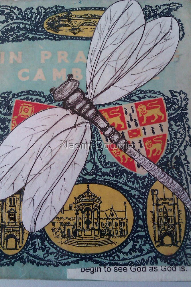 Drangonfly kisses by Naomi Downie