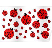 Many Ladybugs Shadows Poster